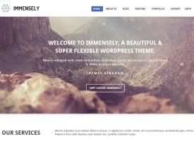 Immensely Wordpress Theme