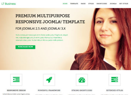 LT Business Joomla Template