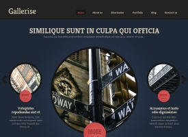 Gallerise Wordpress Theme